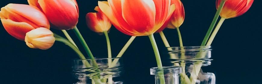 Jarrones y flores